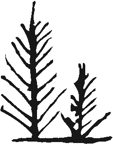 Ink Painted Trees